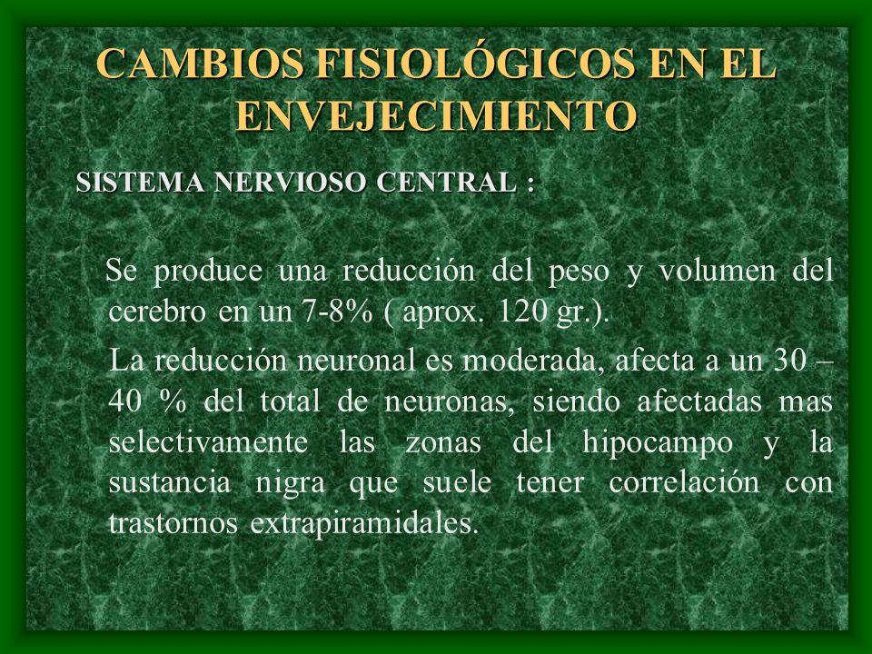 CAMBIOS FISIOLÓGICOS EN EL ENVEJECIMIENTO SISTEMA NERVIOSO CENTRAL : Se produce una reducción del peso y volumen del cerebro en un 7-8% ( aprox. 120 g