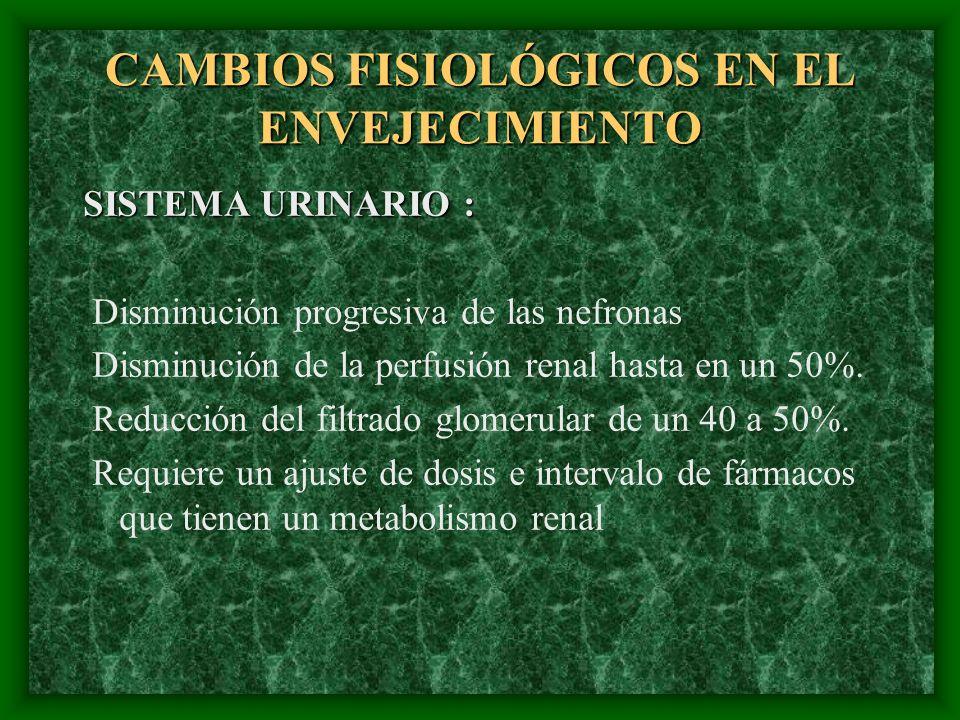 CAMBIOS FISIOLÓGICOS EN EL ENVEJECIMIENTO SISTEMA URINARIO : Disminución progresiva de las nefronas Disminución de la perfusión renal hasta en un 50%.