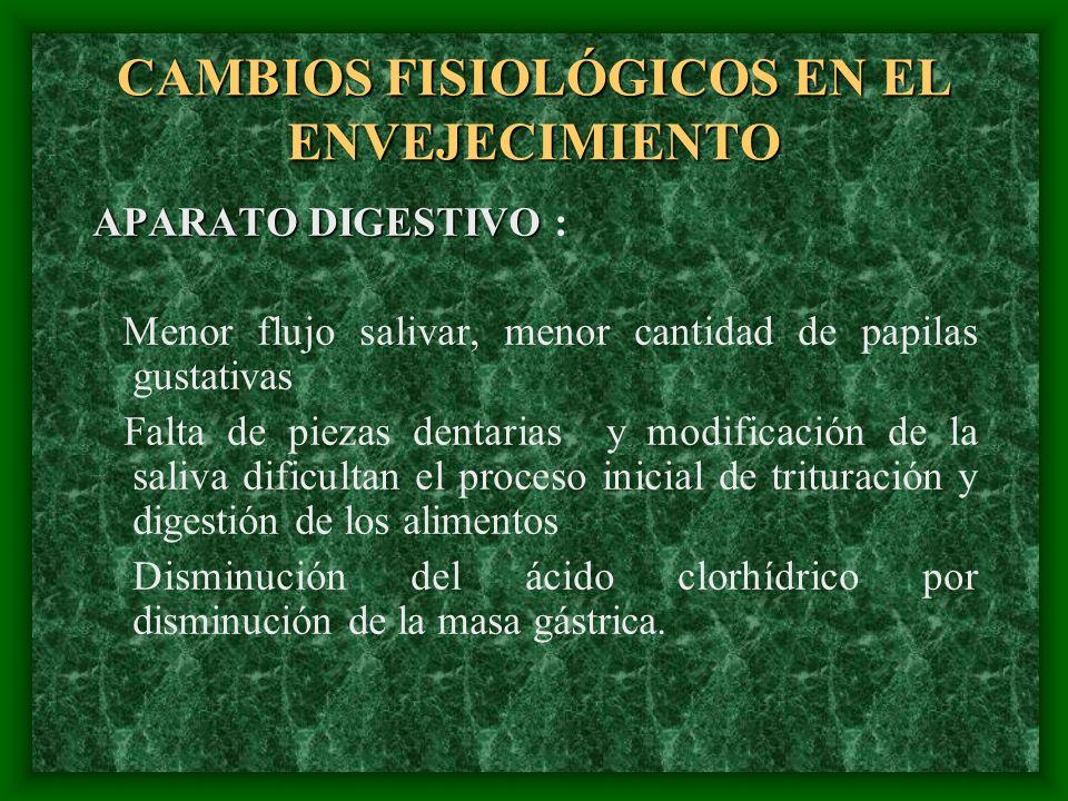 CAMBIOS FISIOLÓGICOS EN EL ENVEJECIMIENTO APARATO DIGESTIVO APARATO DIGESTIVO : Menor flujo salivar, menor cantidad de papilas gustativas Falta de pie