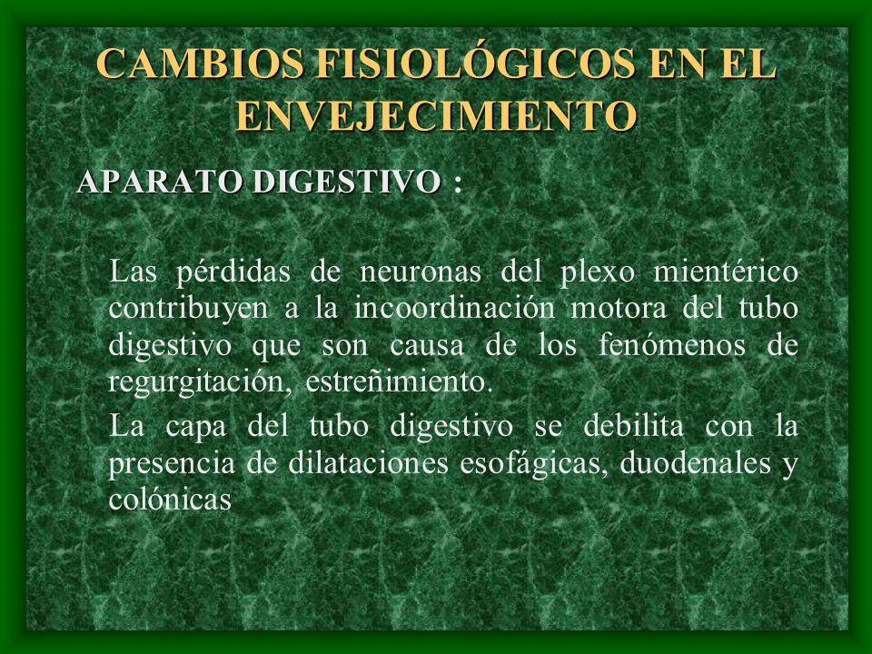 CAMBIOS FISIOLÓGICOS EN EL ENVEJECIMIENTO APARATO DIGESTIVO APARATO DIGESTIVO : Las pérdidas de neuronas del plexo mientérico contribuyen a la incoord