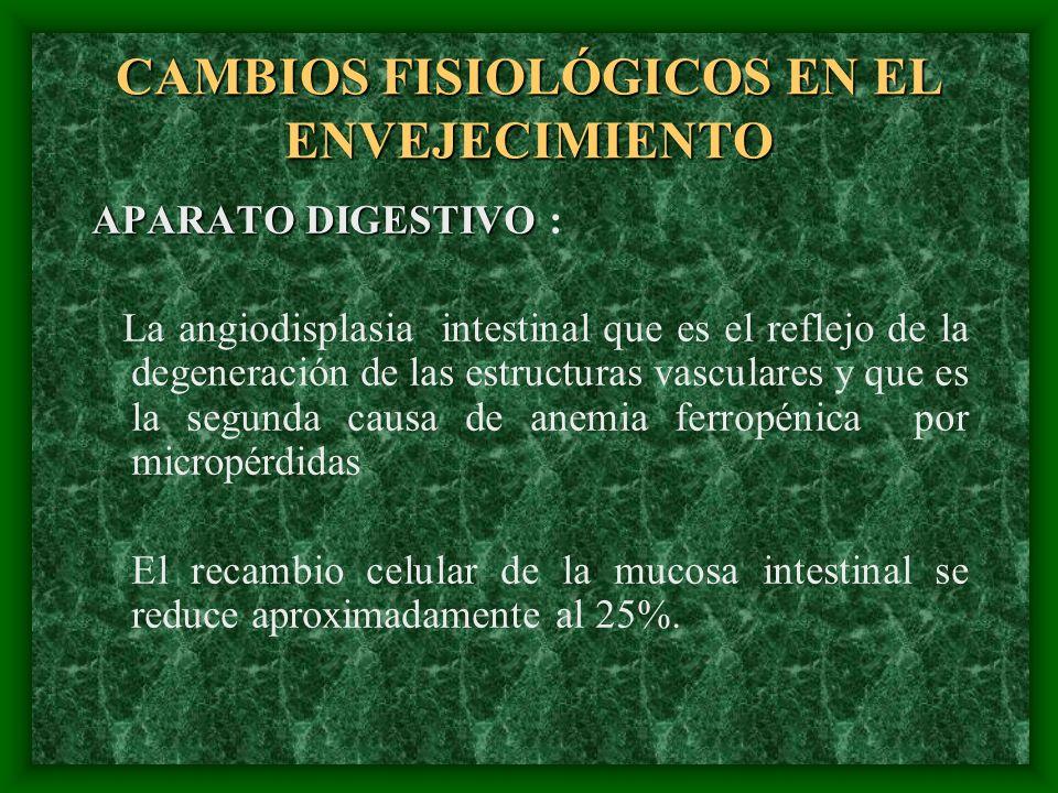CAMBIOS FISIOLÓGICOS EN EL ENVEJECIMIENTO APARATO DIGESTIVO APARATO DIGESTIVO : La angiodisplasia intestinal que es el reflejo de la degeneración de l