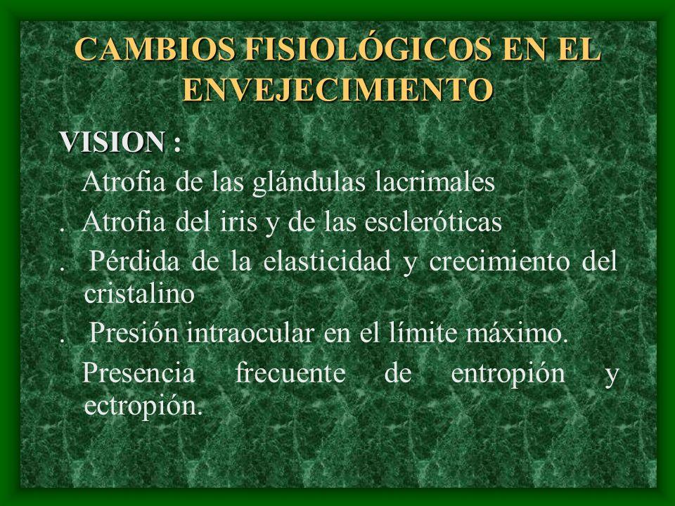 CAMBIOS FISIOLÓGICOS EN EL ENVEJECIMIENTO VISION VISION : Atrofia de las glándulas lacrimales. Atrofia del iris y de las escleróticas. Pérdida de la e
