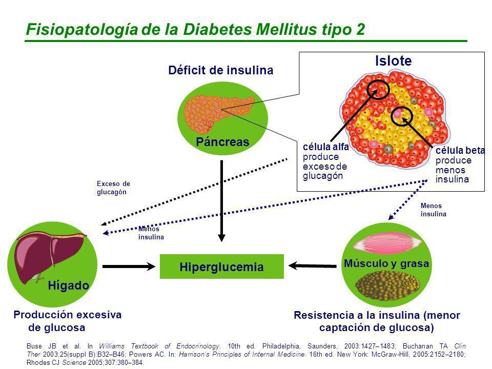 Respuesta de insulina y glucagón a una comida rica en carbohidratos Insulina (µU/ml) Glucagón (µg/ml) Glucosa (mg/100 ml) *Insulina medida en cinco pacientes Müller WA et al N Engl J Med 1970;283:109–115.