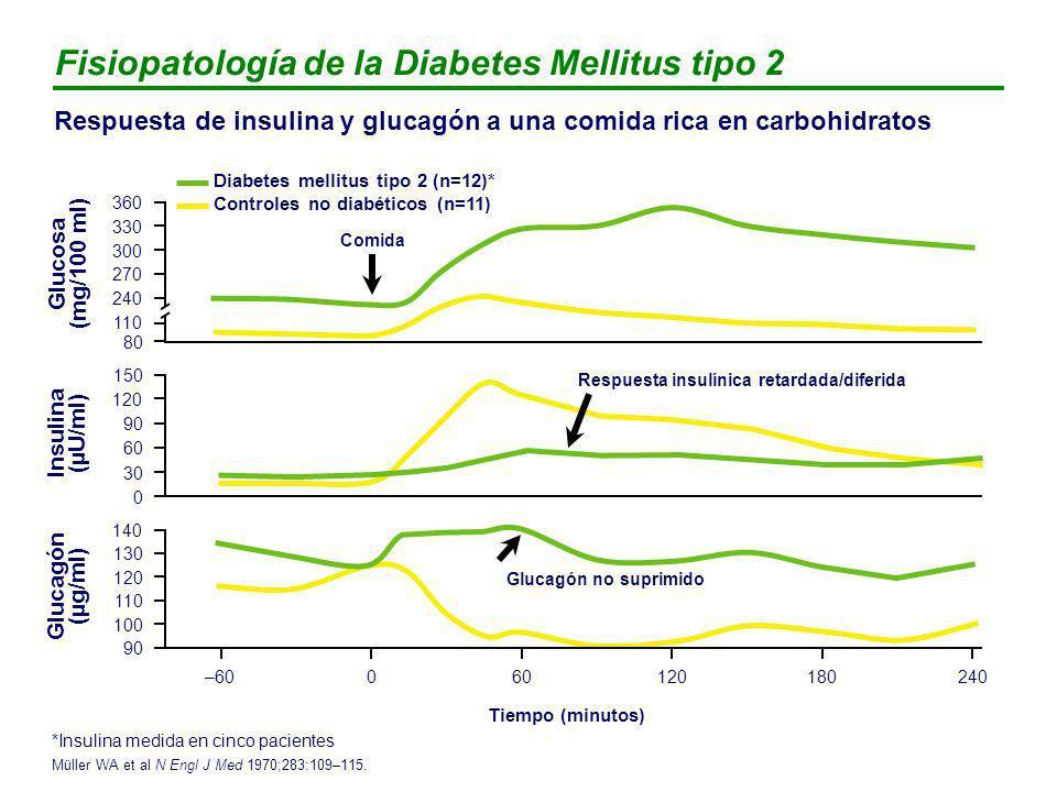 INHIBIDORES - GLUCOSIDASA Dosis inicial (mg/día)Dosis máxima (mg/día) ACARBOSA150600 MIGLITOL150300 EFICACIA: - Menor que sulfonilureas y metformina: reducción - Posible utilidad clínica en corrección de hiperglucemias posprandiales glucemia basal: 25-30 mg/dl glucemia postprandial: 40-50 mg/dl HbA1c: 0,5 – 1% SEGURIDAD: - Problemas GI (30% de los pacientes tratados) - Elevación transaminasas cuando se utilizan a dosis máxima.