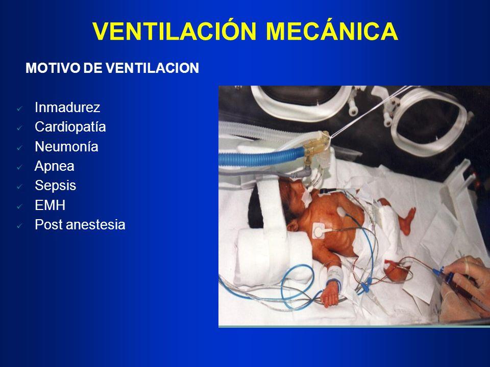 VENTILACIÓN MECÁNICA MOTIVO DE VENTILACION Inmadurez Cardiopatía Neumonía Apnea Sepsis EMH Post anestesia