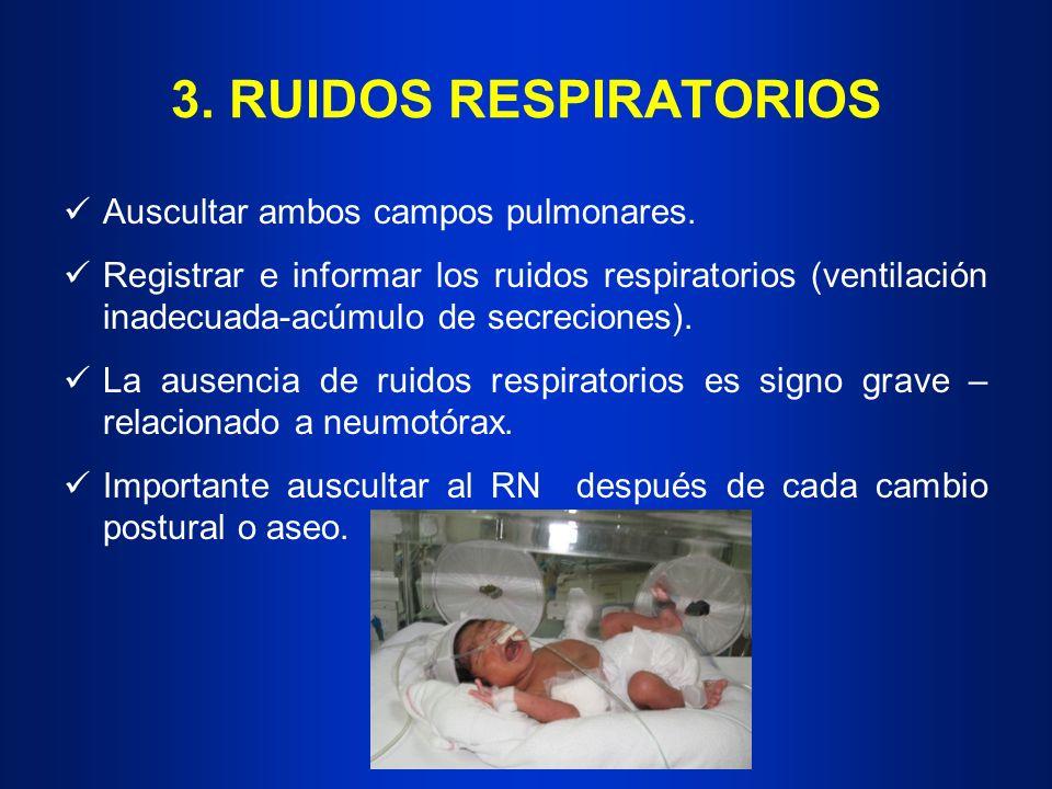 3. RUIDOS RESPIRATORIOS Auscultar ambos campos pulmonares. Registrar e informar los ruidos respiratorios (ventilación inadecuada-acúmulo de secrecione