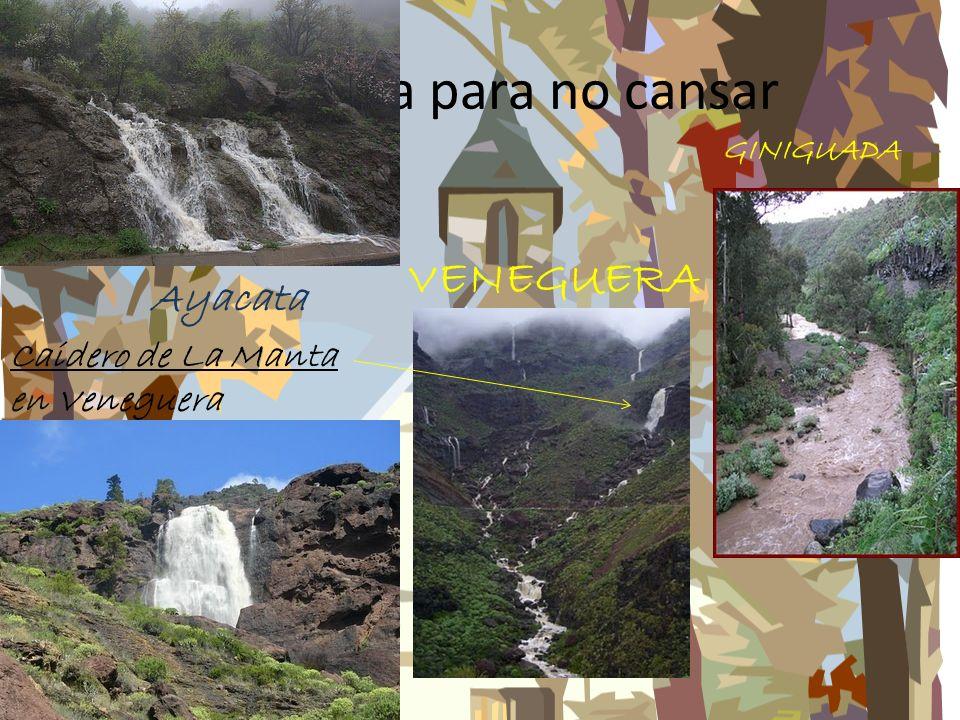 NO PUEDE FALTAR EL FONDO CON IMAGEN F I N Mesa de Acusa (vista desde Artenara)