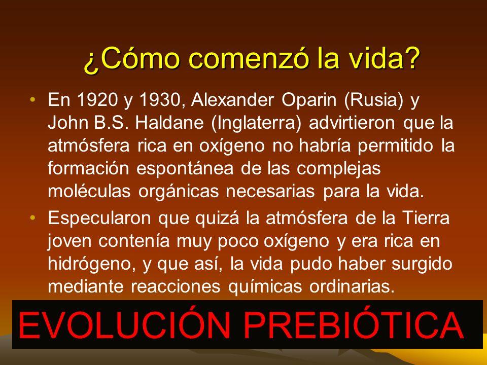 1801, Jean Baptiste Lamarck, todas las especies, incluido el Homo sapiens, desciende de otras especies.