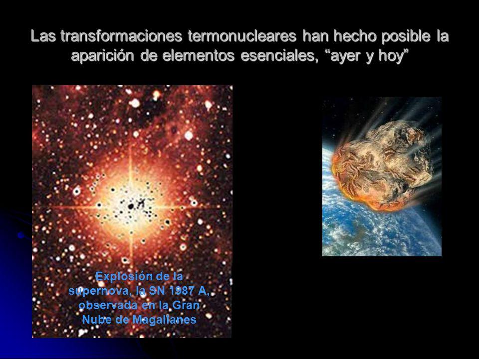 Las transformaciones termonucleares han hecho posible la aparición de elementos esenciales, ayer y hoy Explosión de la supernova, la SN 1987 A, observ