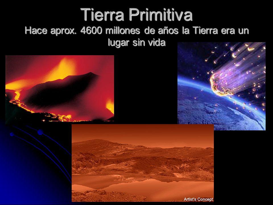 Resultado de imagen de Hace 3.800 millones de años surgió la vida en la Tierra