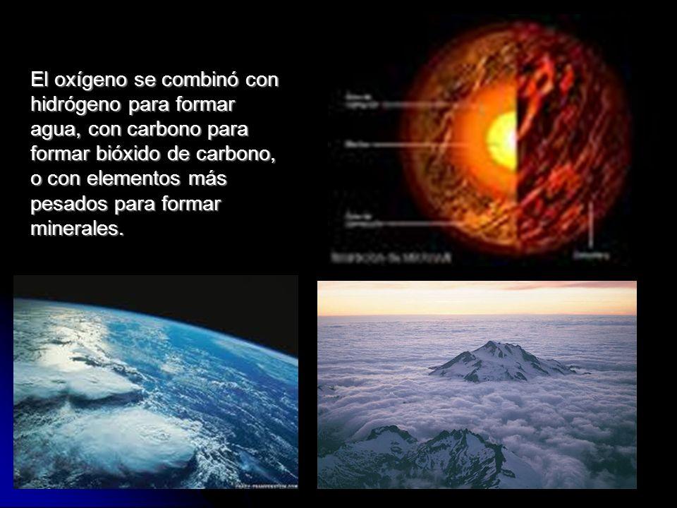 El oxígeno se combinó con hidrógeno para formar agua, con carbono para formar bióxido de carbono, o con elementos más pesados para formar minerales.