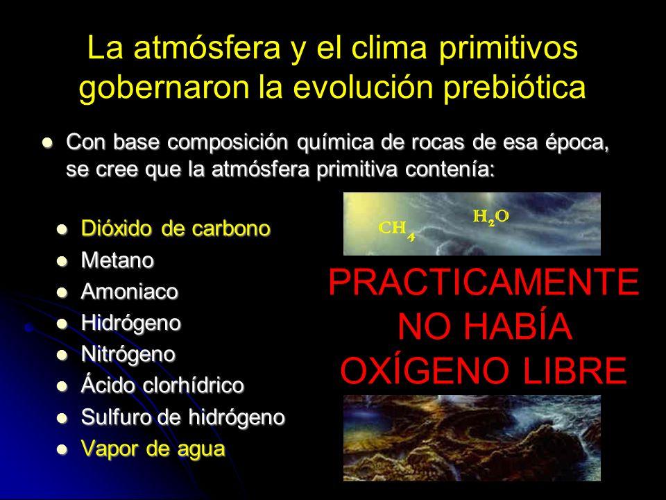 La atmósfera y el clima primitivos gobernaron la evolución prebiótica Dióxido de carbono Dióxido de carbono Metano Metano Amoniaco Amoniaco Hidrógeno