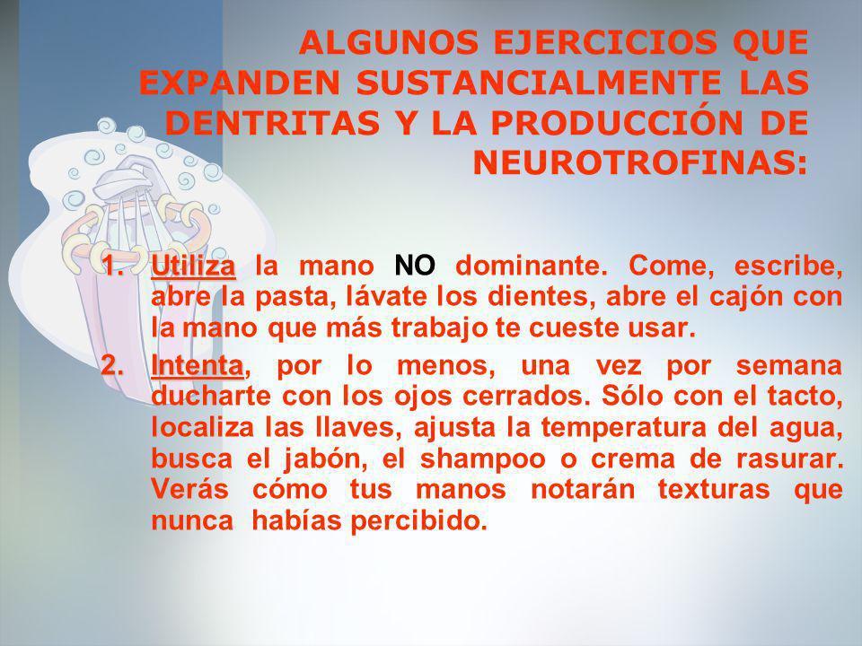 ALGUNOS EJERCICIOS QUE EXPANDEN SUSTANCIALMENTE LAS DENTRITAS Y LA PRODUCCIÓN DE NEUROTROFINAS: 1.Utiliza 1.Utiliza la mano NO dominante. Come, escrib