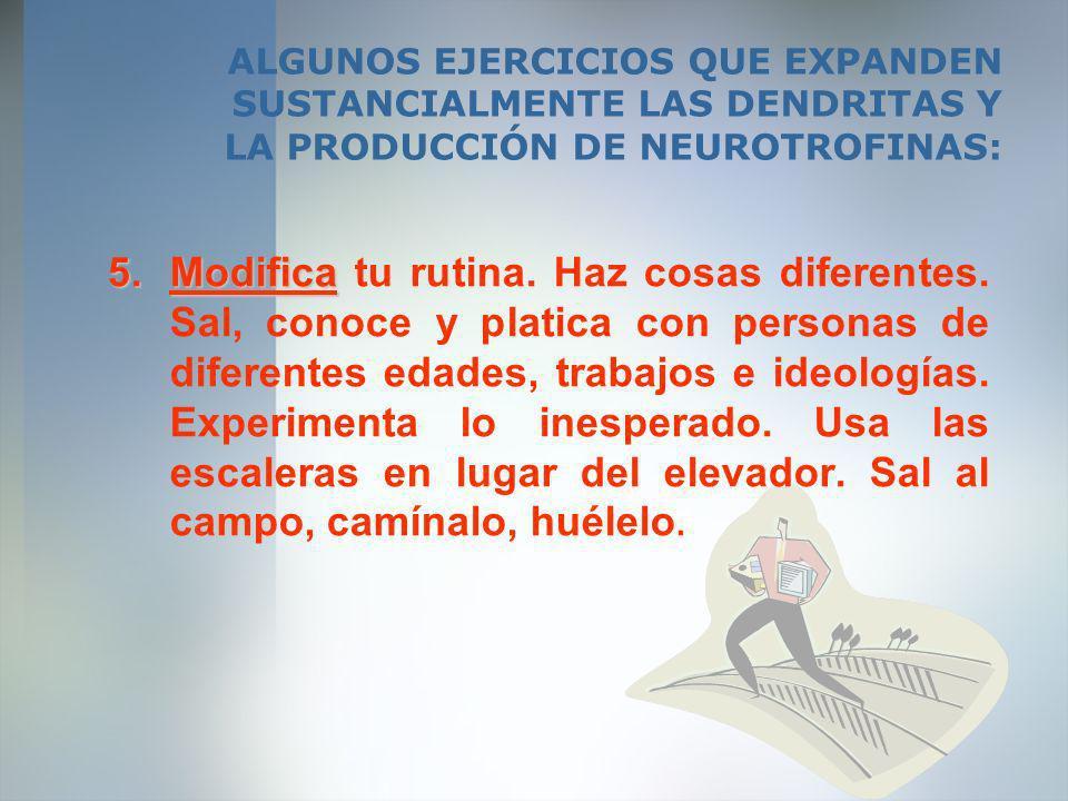 ALGUNOS EJERCICIOS QUE EXPANDEN SUSTANCIALMENTE LAS DENDRITAS Y LA PRODUCCIÓN DE NEUROTROFINAS: 5.Modifica 5.Modifica tu rutina. Haz cosas diferentes.