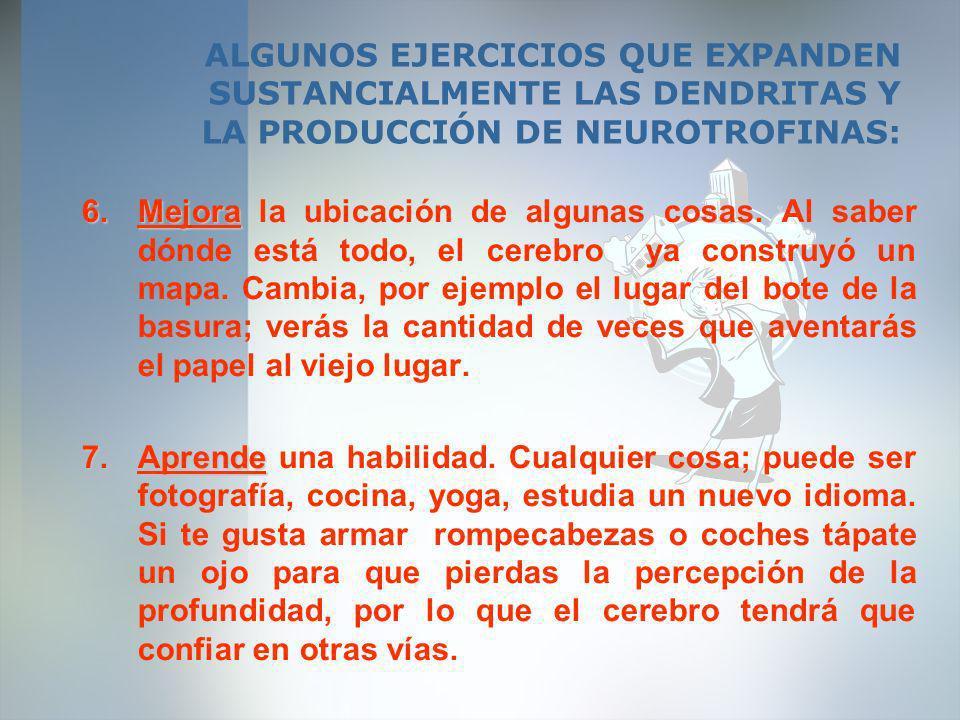 ALGUNOS EJERCICIOS QUE EXPANDEN SUSTANCIALMENTE LAS DENDRITAS Y LA PRODUCCIÓN DE NEUROTROFINAS: 6.Mejora 6.Mejora la ubicación de algunas cosas. Al sa