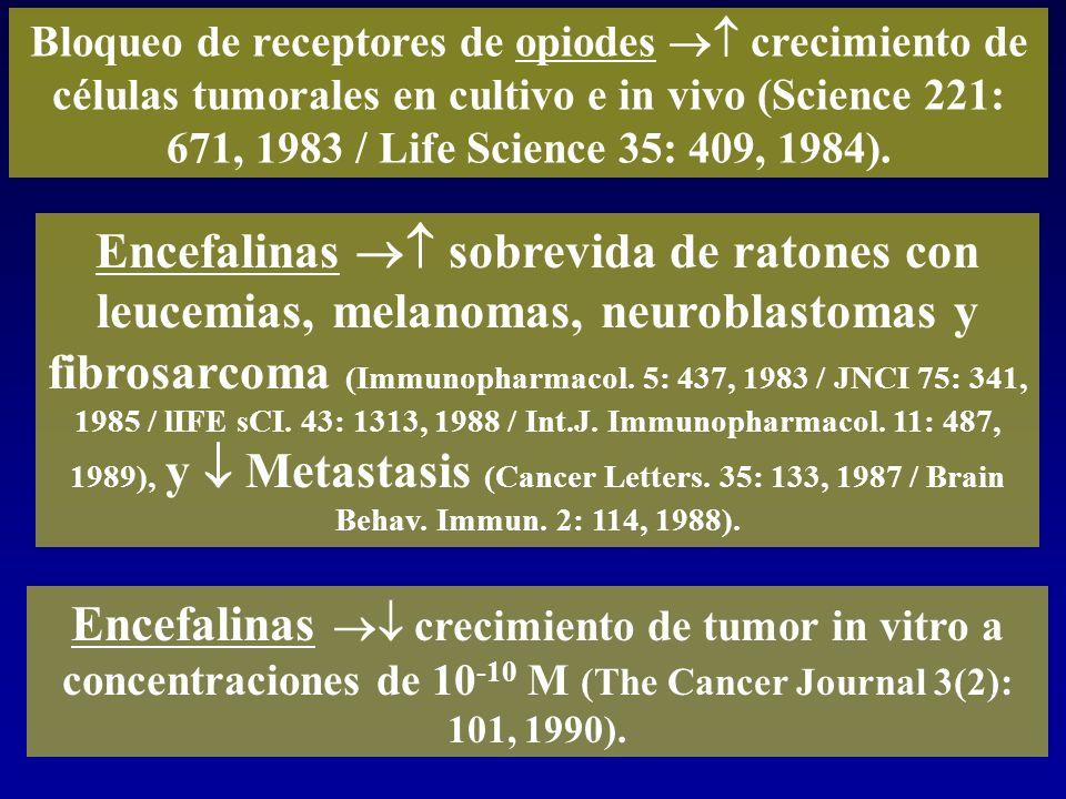 Encefalinas sobrevida de ratones con leucemias, melanomas, neuroblastomas y fibrosarcoma (Immunopharmacol. 5: 437, 1983 / JNCI 75: 341, 1985 / lIFE sC