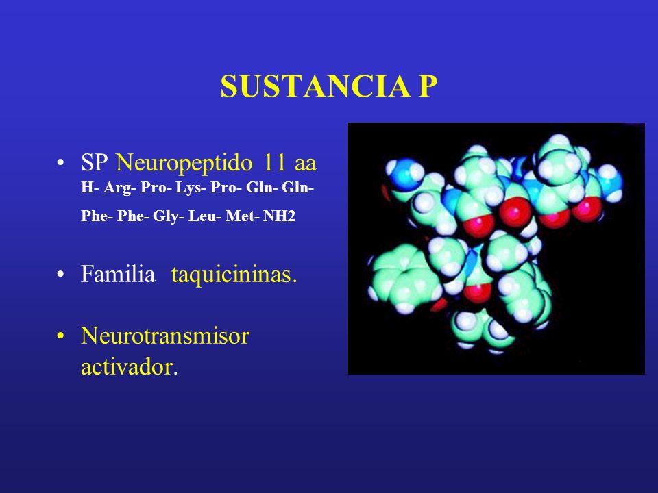 SUSTANCIA P SP Neuropeptido 11 aa H- Arg- Pro- Lys- Pro- Gln- Gln- Phe- Phe- Gly- Leu- Met- NH2 Familia taquicininas. Neurotransmisor activador.