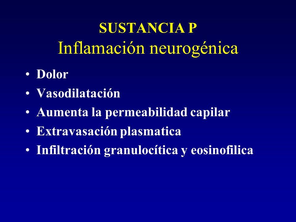 SUSTANCIA P Inflamación neurogénica Dolor Vasodilatación Aumenta la permeabilidad capilar Extravasación plasmatica Infiltración granulocítica y eosino