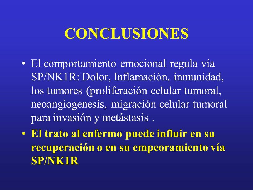 CONCLUSIONES El comportamiento emocional regula vía SP/NK1R: Dolor, Inflamación, inmunidad, los tumores (proliferación celular tumoral, neoangiogenesi