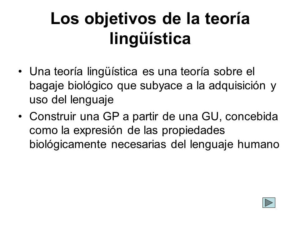 Los objetivos de la teoría lingüística Una teoría lingüística es una teoría sobre el bagaje biológico que subyace a la adquisición y uso del lenguaje