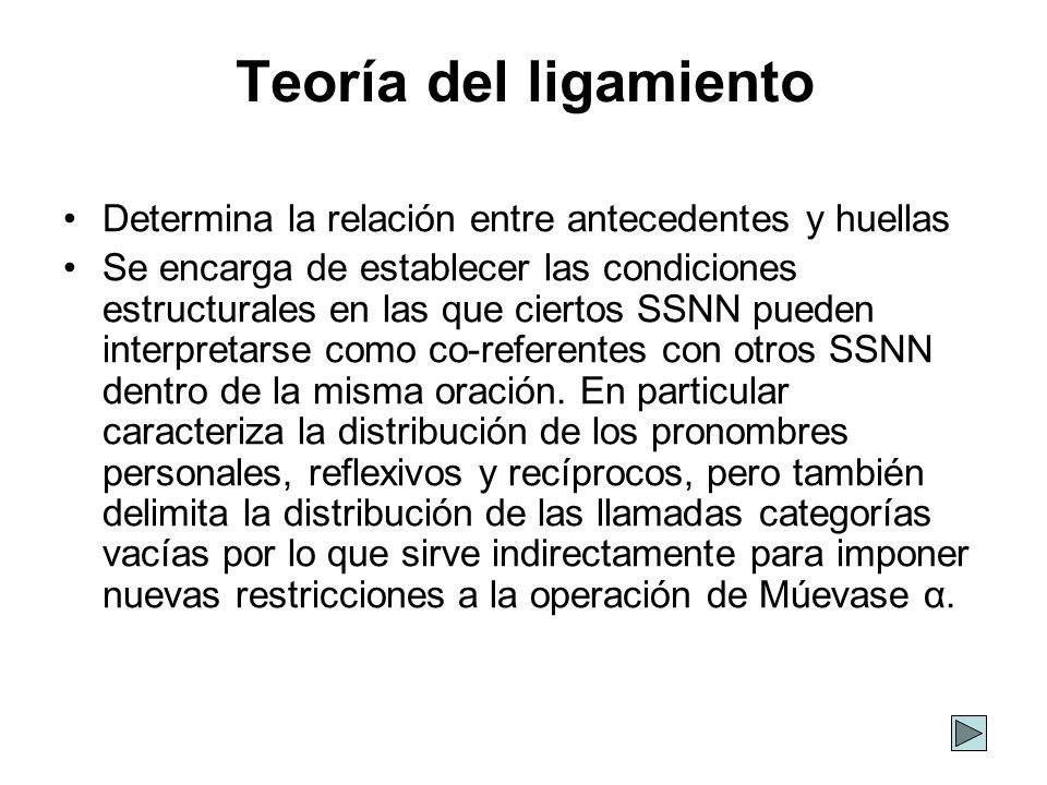 Teoría del ligamiento Determina la relación entre antecedentes y huellas Se encarga de establecer las condiciones estructurales en las que ciertos SSN