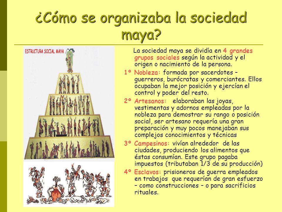 ¿Cómo se organizaba la sociedad maya? La sociedad maya se dividía en 4 grandes grupos sociales según la actividad y el origen o nacimiento de la perso