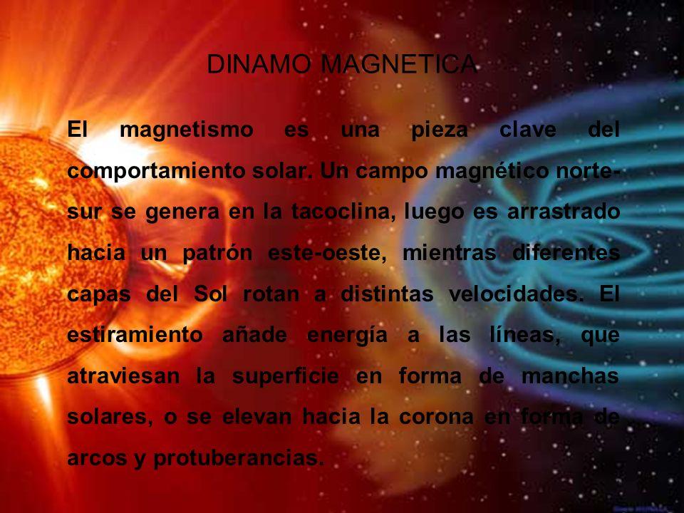 DINAMO MAGNETICA El magnetismo es una pieza clave del comportamiento solar.