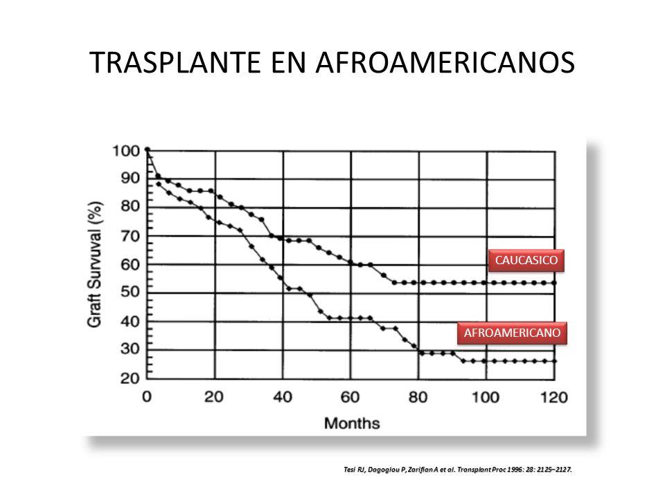 TRASPLANTE EN AFROAMERICANOS CAUCASICO AFROAMERICANO Tesi RJ, Dagoglou P, Zarifian A et al. Transplant Proc 1996: 28: 2125–2127.