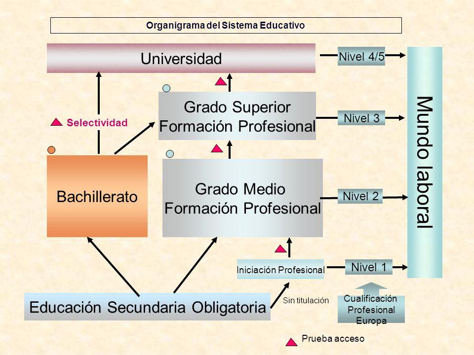 Organigrama del Sistema Educativo Educación Secundaria Obligatoria Universidad Bachillerato Grado Superior Formación Profesional Grado Medio Formación