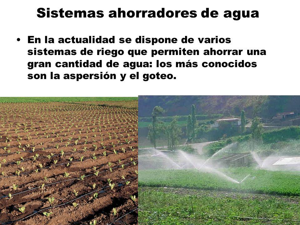 Sistemas ahorradores de agua En la actualidad se dispone de varios sistemas de riego que permiten ahorrar una gran cantidad de agua: los más conocidos