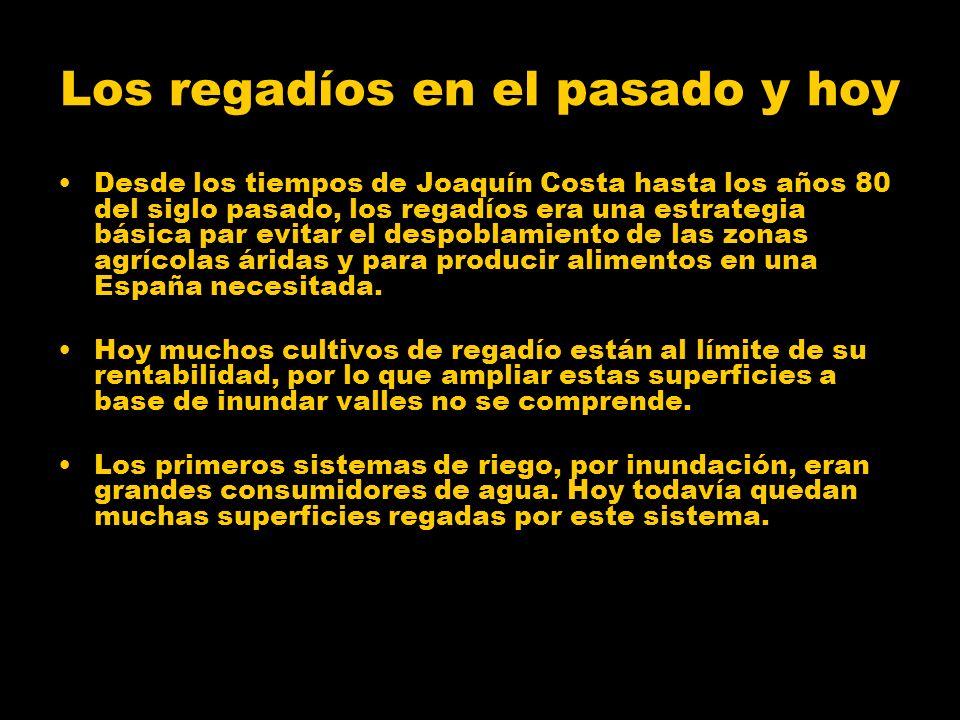 Los regadíos en el pasado y hoy Desde los tiempos de Joaquín Costa hasta los años 80 del siglo pasado, los regadíos era una estrategia básica par evit