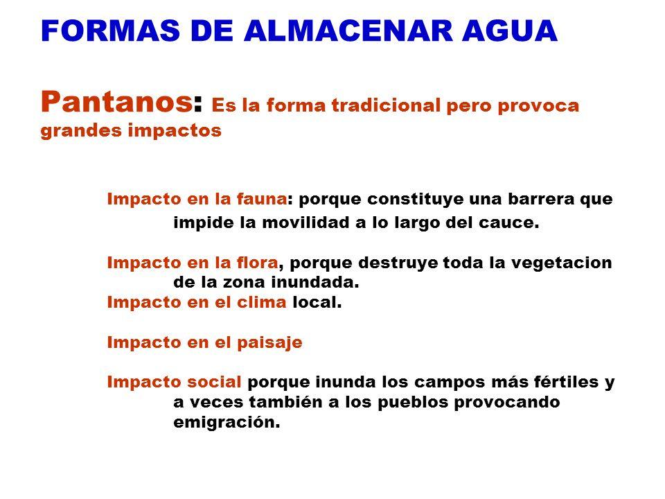 FORMAS DE ALMACENAR AGUA Pantanos: Es la forma tradicional pero provoca grandes impactos Impacto en la fauna: porque constituye una barrera que impide