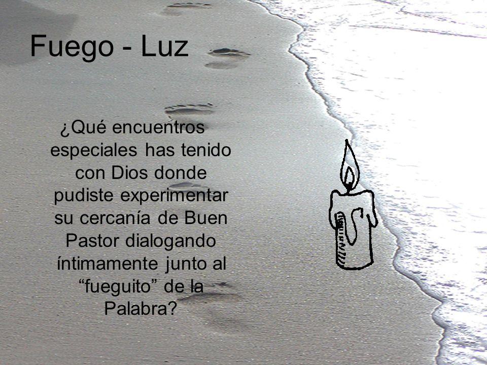 Fuego - Luz ¿Qué encuentros especiales has tenido con Dios donde pudiste experimentar su cercanía de Buen Pastor dialogando íntimamente junto al fuegu