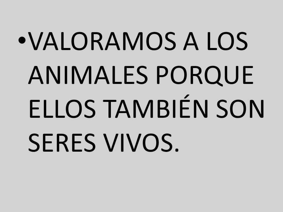 VALORAMOS A LOS ANIMALES PORQUE ELLOS TAMBIÉN SON SERES VIVOS.