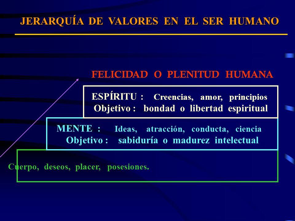 JERARQUÍA DE VALORESEN EL SER HUMANO JERARQUÍA DE VALORES EN EL SER HUMANO FELICIDAD O PLENITUD HUMANA FÍSICO - MATERIA : Cuerpo, deseos, placer, pose