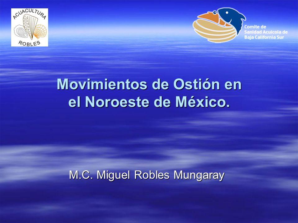 Se revisan las principales movilizaciones de ostión que se han realizado en el noroeste de México desde los años 80´s tanto de larvas, juveniles y adultos, incluyen las especies de Crassostrea gigas.