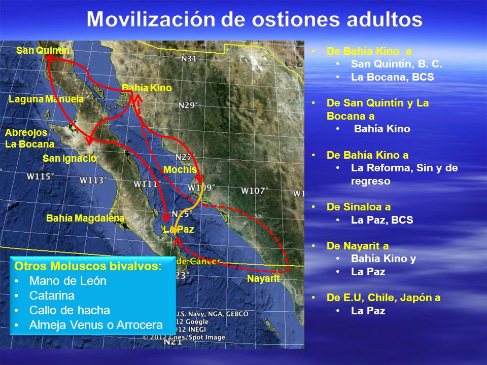 Washington Oregon California Para Fijación Remota ó individual: De Estados Unidos a: San Quintín, B.C.