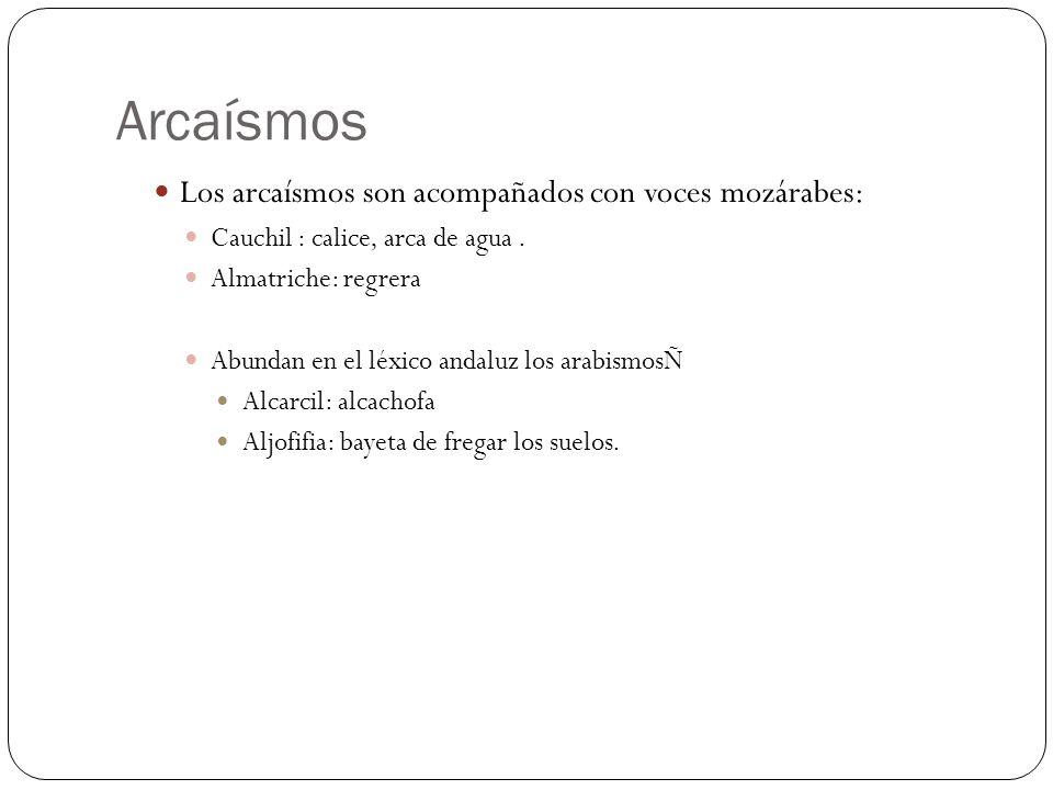 Arcaísmos Los arcaísmos son acompañados con voces mozárabes: Cauchil : calice, arca de agua. Almatriche: regrera Abundan en el léxico andaluz los arab