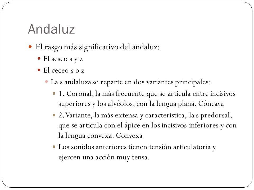 Andaluz El rasgo más significativo del andaluz: El seseo s y z El ceceo s o z La s andaluza se reparte en dos variantes principales: 1. Coronal, la má