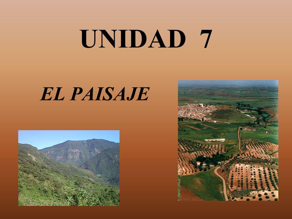 UNIDAD 7 EL PAISAJE