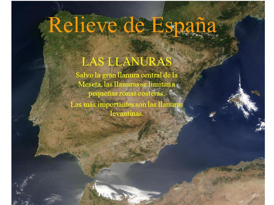 Relieve de España LAS LLANURAS Salvo la gran llanura central de la Meseta, las llanuras se limitan a pequeñas zonas costeras. Las más importantes son