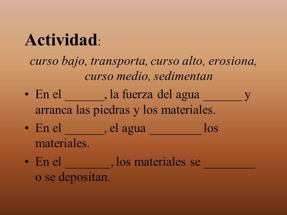 Actividad : curso bajo, transporta, curso alto, erosiona, curso medio, sedimentan En el ______, la fuerza del agua ______ y arranca las piedras y los