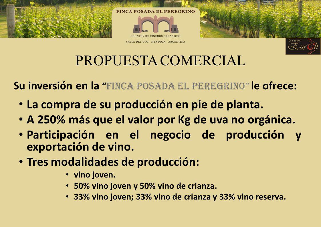 PROPUESTA COMERCIAL Su inversión en la FINCA POSADA EL PEREGRINO le ofrece: La compra de su producción en pie de planta. A 250% más que el valor por K