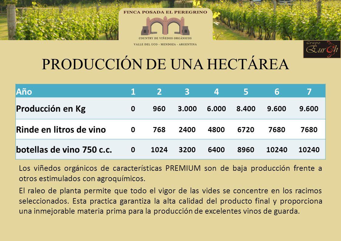 PRODUCCIÓN DE UNA HECTÁREA Los viñedos orgánicos de características PREMIUM son de baja producción frente a otros estimulados con agroquímicos. El ral