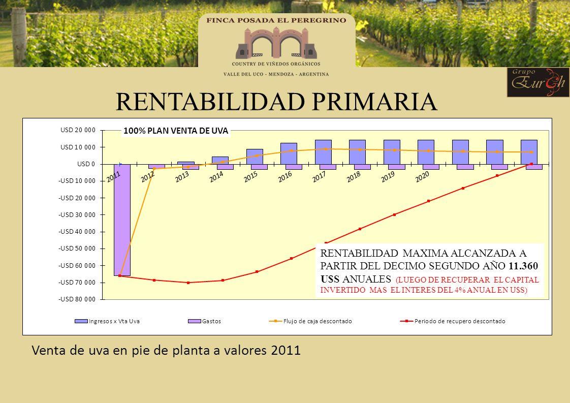 RENTABILIDAD PRIMARIA Venta de uva en pie de planta a valores 2011 RENTABILIDAD MAXIMA ALCANZADA A PARTIR DEL DECIMO SEGUNDO AÑO 11.360 U$S ANUALES (L