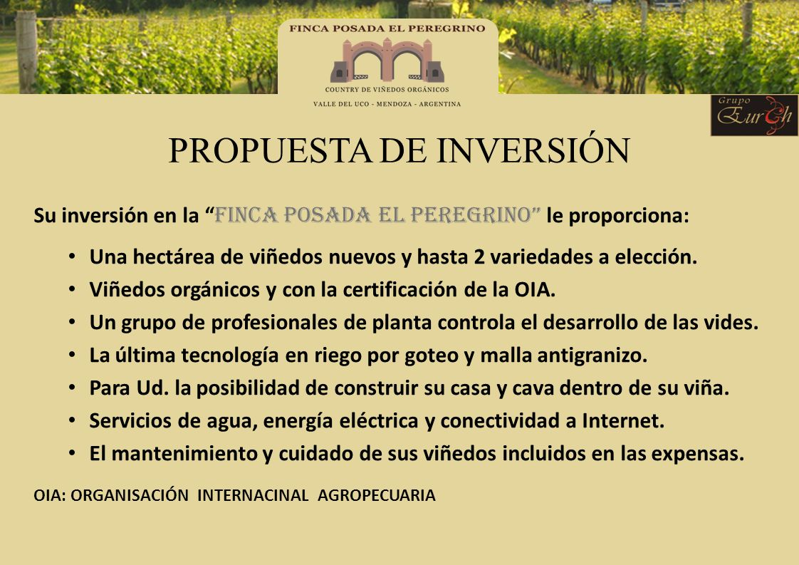 PROPUESTA DE INVERSIÓN Su inversión en la FINCA POSADA EL PEREGRINO le proporciona: Una hectárea de viñedos nuevos y hasta 2 variedades a elección. Vi