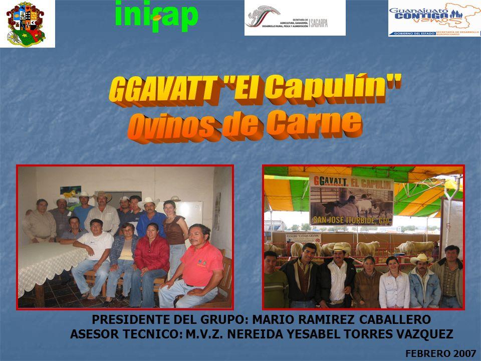 PRESIDENTE DEL GRUPO: MARIO RAMIREZ CABALLERO ASESOR TECNICO: M.V.Z. NEREIDA YESABEL TORRES VAZQUEZ FEBRERO 2007