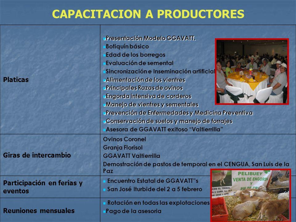 CAPACITACION A PRODUCTORES Platicas Presentación Modelo GGAVATT. Presentación Modelo GGAVATT. Botiquín básico Edad de los borregos Evaluación de semen