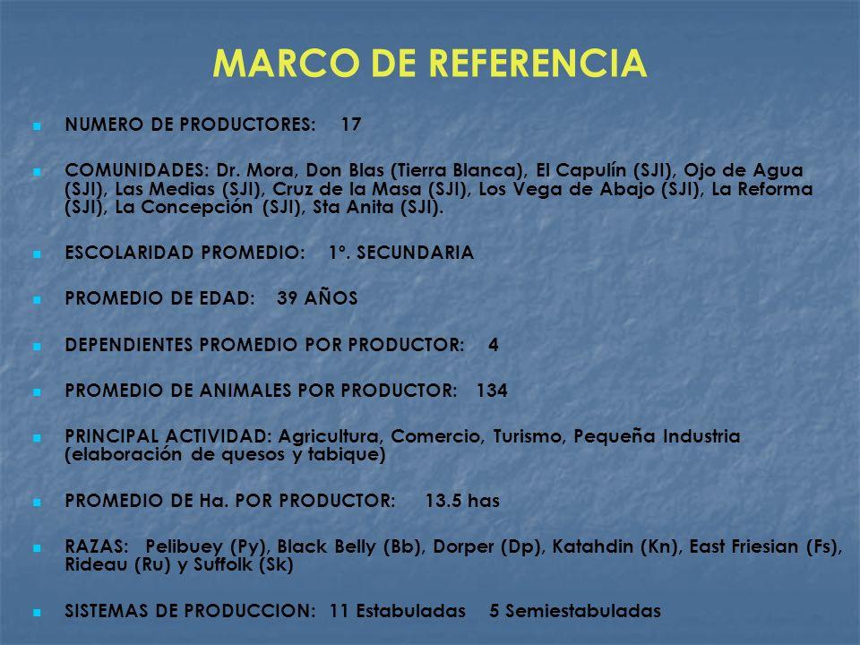 MARCO DE REFERENCIA NUMERO DE PRODUCTORES: 17 COMUNIDADES: Dr. Mora, Don Blas (Tierra Blanca), El Capulín (SJI), Ojo de Agua (SJI), Las Medias (SJI),