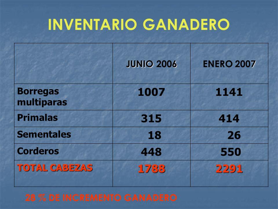 INVENTARIO GANADERO JUNIO6 JUNIO 2006 7 ENERO 2007 Borregas multiparas 10071141 Primalas 315414 Sementales 18 26 Corderos 448 550 TOTAL CABEZAS 178822